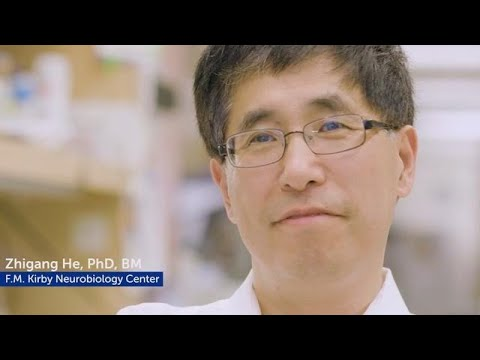 Researcher Profile: Zhigang He, PhD, BM | Boston Children's