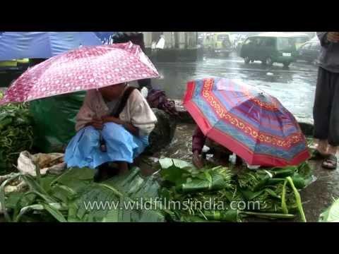 Cherrapunji Market with fresh fruit and LOTS of rain and umbrellas!