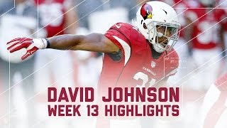 David Johnson's Explodes with 175 Total Yards! | NFL Week 13 Player Highlights