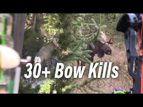 30 Bow Hunts in Under 15 Minutes! Eastmans' Bow Hunting