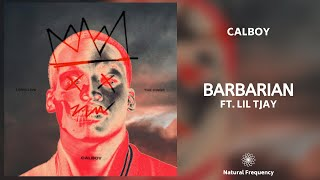 Calboy - Barbarian ft. Lil Tjay (432Hz)