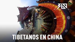 Tibetanos en China: Provincia de Qinghai (VIDEO 360º)