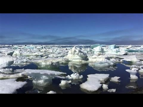 Arctic Sea Ice and the Impact of Record Summer Heat