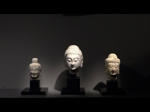 Wei to Tang: Three Buddha Heads