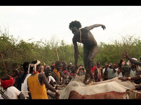 Hamar Tribe. Bull Jumping Ceremony. Ethiopia . Video by Andrzej Zarzecki