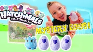 Baixar Father & Son HATCHIMALS SURPRISE! / Mystery Egg Pack!