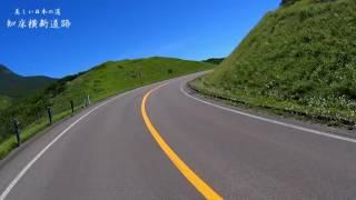 国道334号(こくどう334ごう)は、北海道目梨郡羅臼町を起点とし、北海...