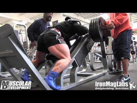 IN THE TRENCHES - HIDETADA YAMAGISHI - LEGS