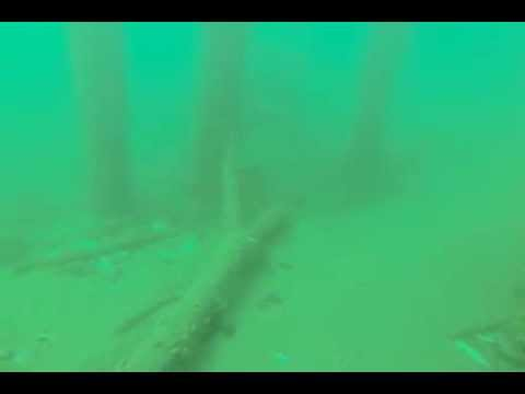 Winchester Bay Or Crab Dock Dive