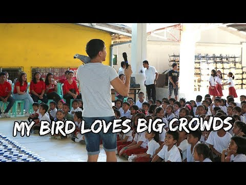 My Bird Loves Big Crowds | Vlog #546 thumbnail
