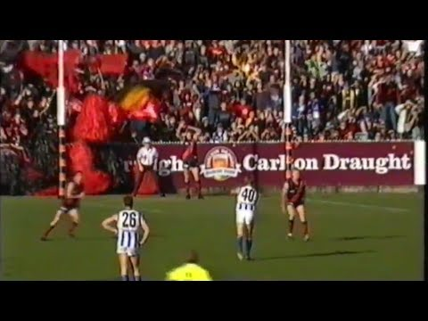 2001 AFL Round 16 - Essendon vs North Melbourne