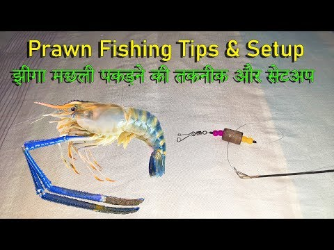 How To Make Prawn Fishing Setup & Prawn Fishing Techniques