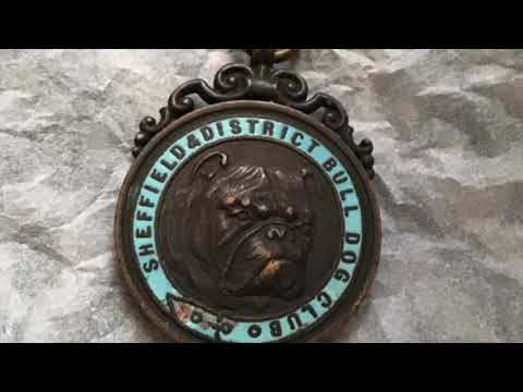 Majestic Bulldog medals gold silver bronze. Various dates
