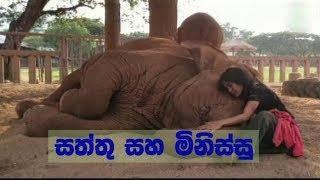 Doramadalawa -  සත්තු සහ මිනිස්සු (2018-08-20) | ITN Thumbnail