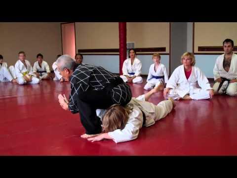 chang's-hapkido-academy- -martial-arts-school-lombard-illinois- -grandmaster-gedo-chang- -grappling