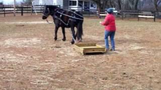 Training Baby-the Wood Sled