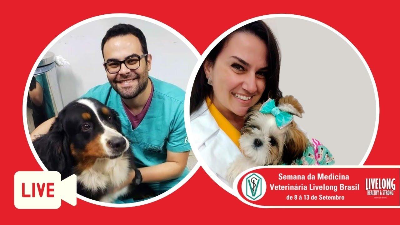 Bate papo sobre nutrição animal com a Dra. Carolina Sant'Anna