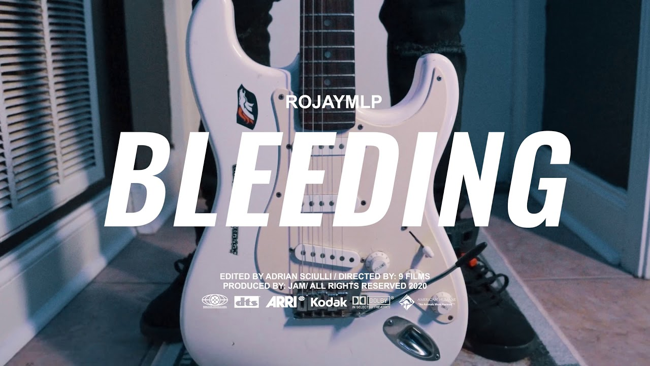 Download RojayMLP - Bleeding (Music Video)