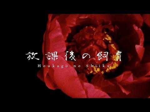 アクメ (ACME)/ 放課後の飼育 (Houkago no Shiiku)【MV】