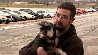 Dog reunited with owner after carjacking