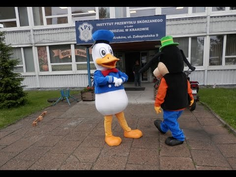 Elabika mascot costumes Donald Duck funny-animal cartoon character mascots animal mascot costume