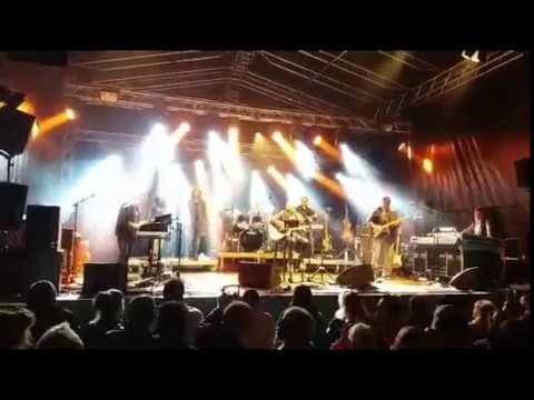 Open Air Livekonzert Wolfgang Ambros Live in Imst   Statdpark, 1 Juli 2017