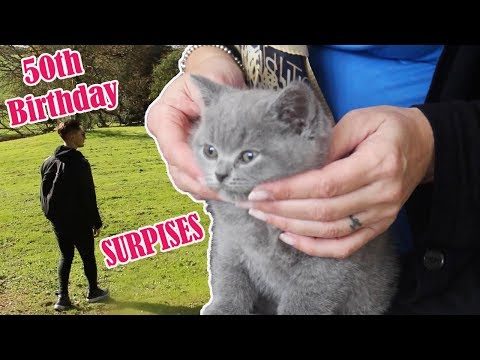 MY BEAUTIFUL MUMS 50TH BIRTHDAY SURPRISES ( NEW KITTEN ! )