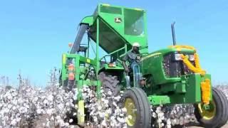 Tierra HDPS Cotton Machine Harvesting Demo