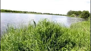 видео 9 карпов рыбалка форум