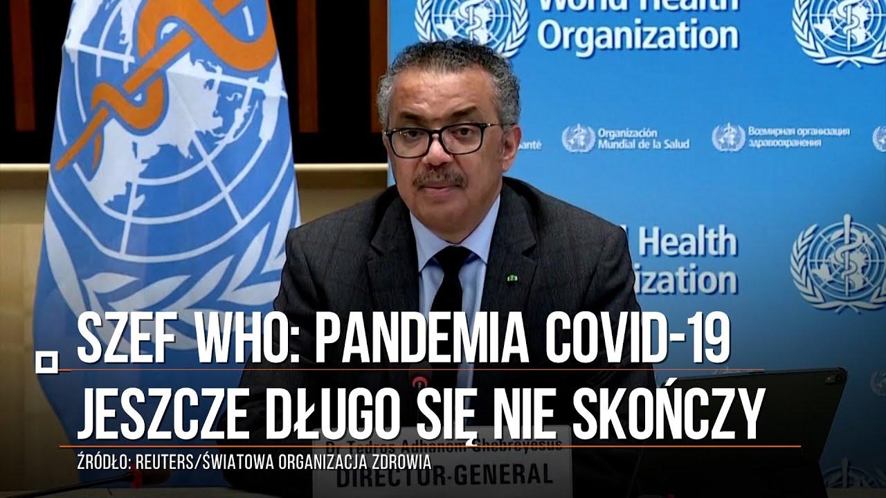 Rekord zgonów w Poznaniu!