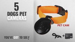 Top 10 Dogs Pet Cameras [2018]: Oumeiou Digital Pet Safety Collar Cam Camera Video Recorder Monitor