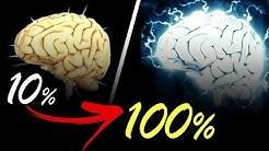 Wie Meditation das Gehirn umbaut (incl. Studien)