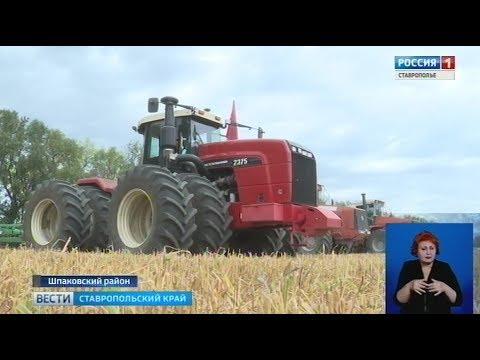 Будущее аграрной отрасли Ставрополья представили в Михайловске