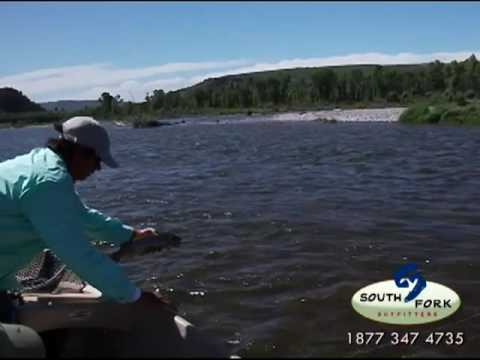Fly Fishing Idaho. Upper South Fork Of The Snake River