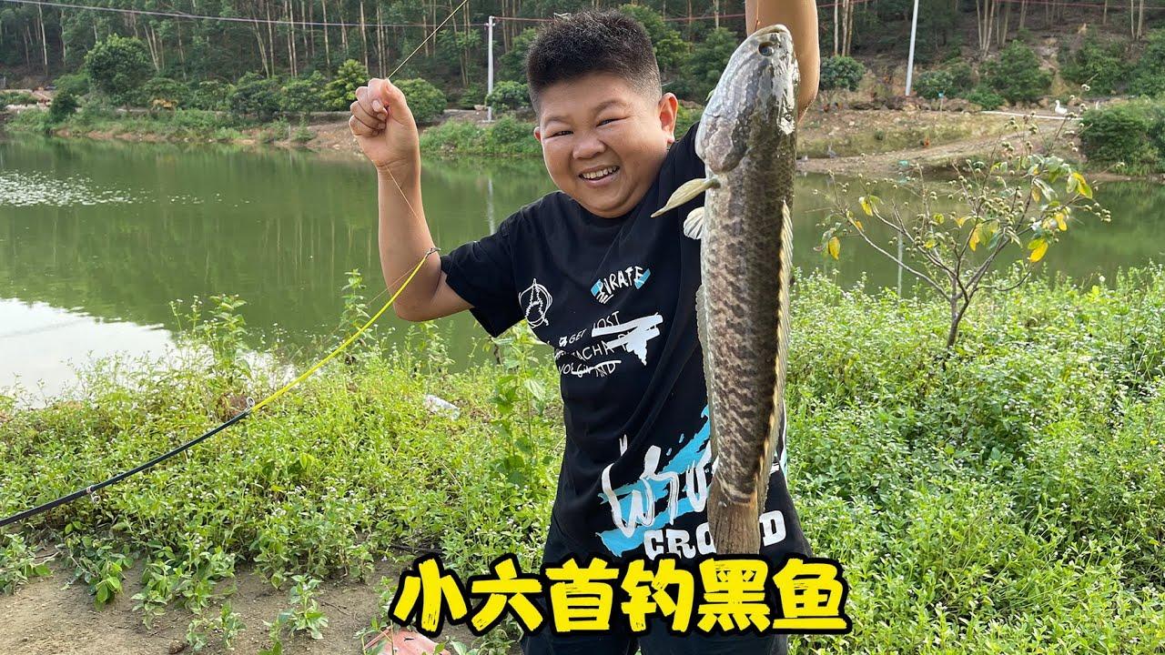 康仔農人推薦的魚塘,小六開杆第一次釣上黑魚,晚餐也有著落了