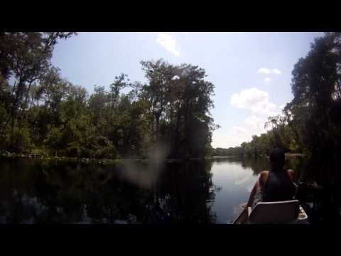 cruise up the silver river