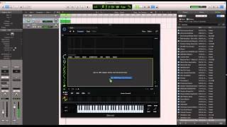 Serum Custom Wavetables / Serum Wavetable editor PT2