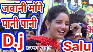 Meri Chadti Jawani Mange Pani Pani👈🎵 D.j Remix Salu Yadav 👌👈🔊