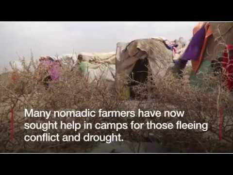 Somalia Faces CATASTROPHIC FAMINE If Drought Continues