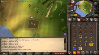 OSRS Farming Guide: Fruit Trees + Normal Trees