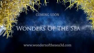 Wonders of the Sea 3D Teaser