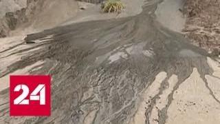 Арктика превратит планету в химическую пустошь - Россия 24