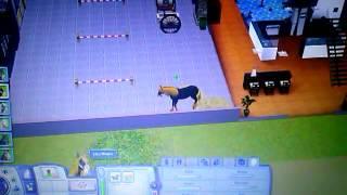 Comment obtenir la licorne dans les sims 3 animaux
