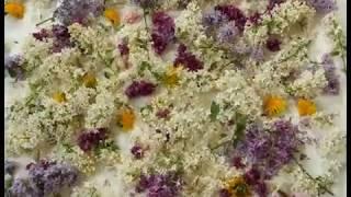 Mia Doi Todd - Spring (fan video)