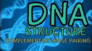 What is DNA? Deoxyribonucleic Acid | DNA Structure - Complementary Base Pairing