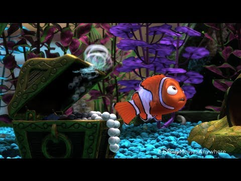 pixar-summer-movies-to-go-countdown---12-surprising-facts-about-finding-nemo