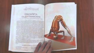 Анатомия Йоги. Книги. Ключевые позы йоги. Рэй Лонг.