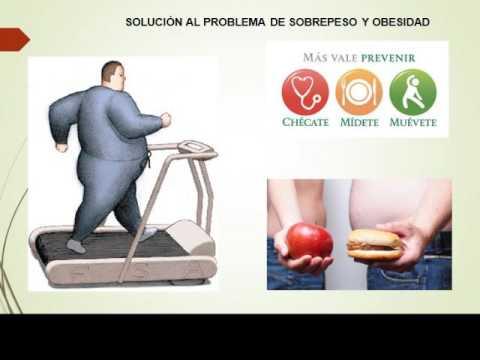 Causas y efectos de la obesidad. - YouTube