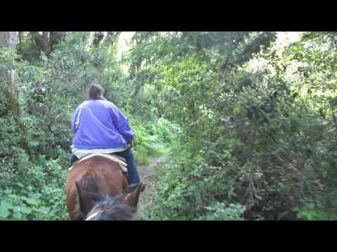 PART 1 - Horseback riding at Andrew Molera State Park in Big Sur, California