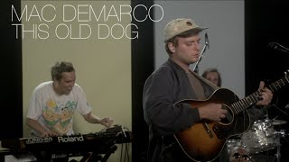 """Mac DeMarco - """"This Old Dog"""" 